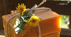 Honey & Dandelion Soap Recipe