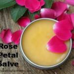 Rose-Petal-Salve