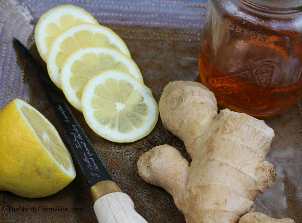 Ginger Lemon & Honey Tonic for Colds & Flu