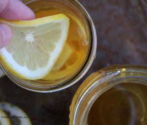 Ginger Lemon Honey Tonic for Colds & Flu