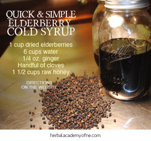 Quick & Simple Elderberry Syrup