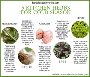 5 kitchen herbs for cold season