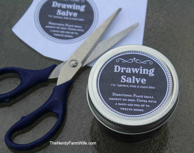 Adding Labels to Drawing Salve