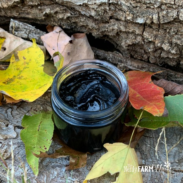 jar of charcoal drawing salve surrounded by autumn leaves