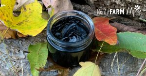 jar of charcoal and clay drawing salve in autumn leaves