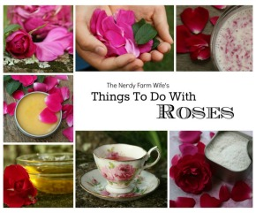Things to do with Roses