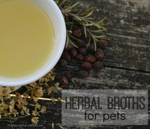 how to use herbal broths to treat pets