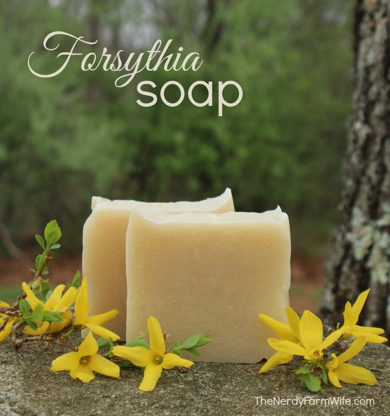 Forsythia Cold Process Soap