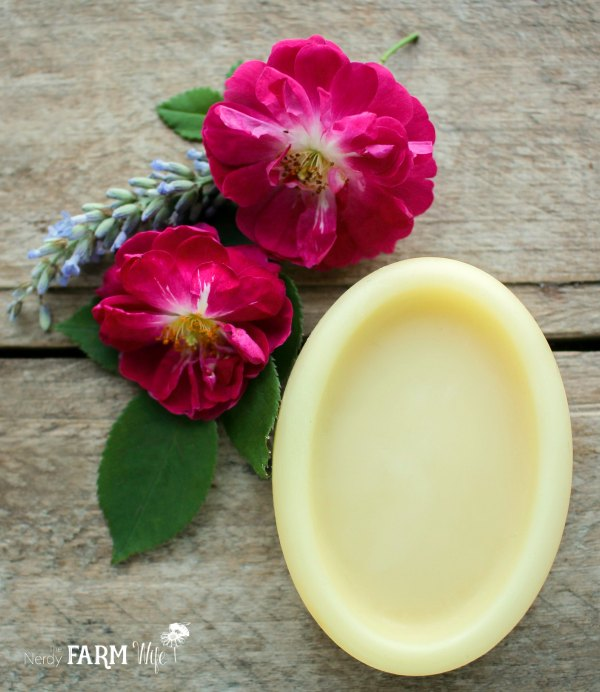 DIY Rose Lotion Bars Made with Real Rose Petals
