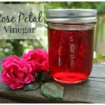Rose Petal Vinegar 290