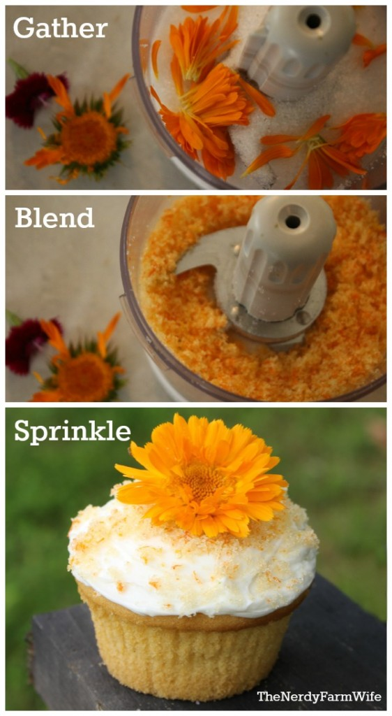 How to make naturally colored decorating sugar with edible flowers and cane sugar. (If you're sugar free, use coconut flakes instead.)