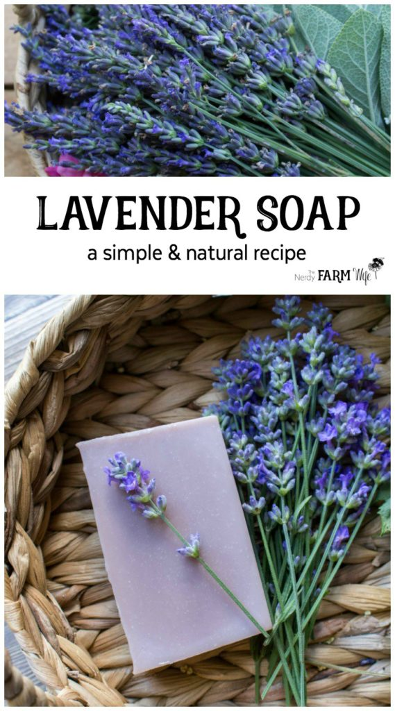 How to Make Handmade Lavender Soap from Scratch - this palm free recipe is naturally colored with purple clay and scented with lavender essential oil.