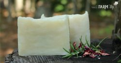 Rosemary Mint Shampoo Bars Recipe