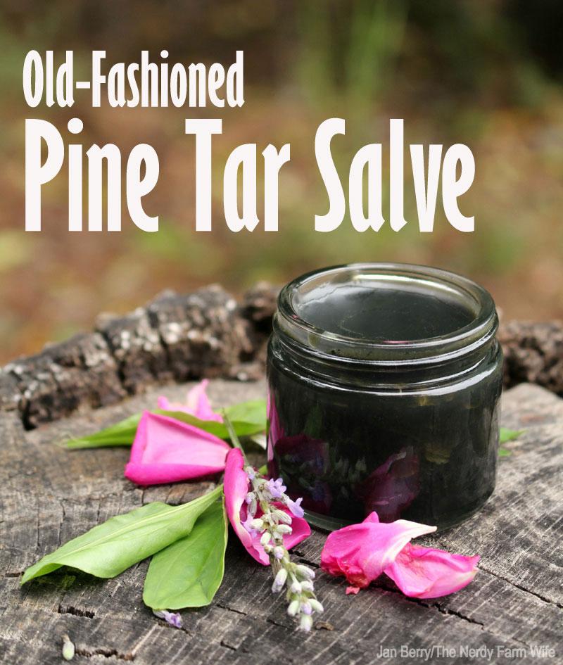 Pine Tar Salve The Nerdy Farm Wife