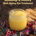 Rosehip & Honey Anti Aging Eye Treatment