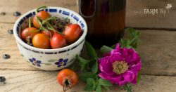 Rosehip & Honey Anti-Aging Eye Treatment
