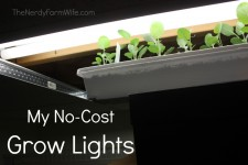 My No Cost Grow Lights for Starting Seeds