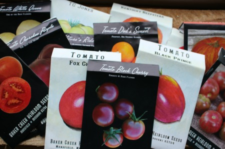 A Few Heirloom Tomato Seeds