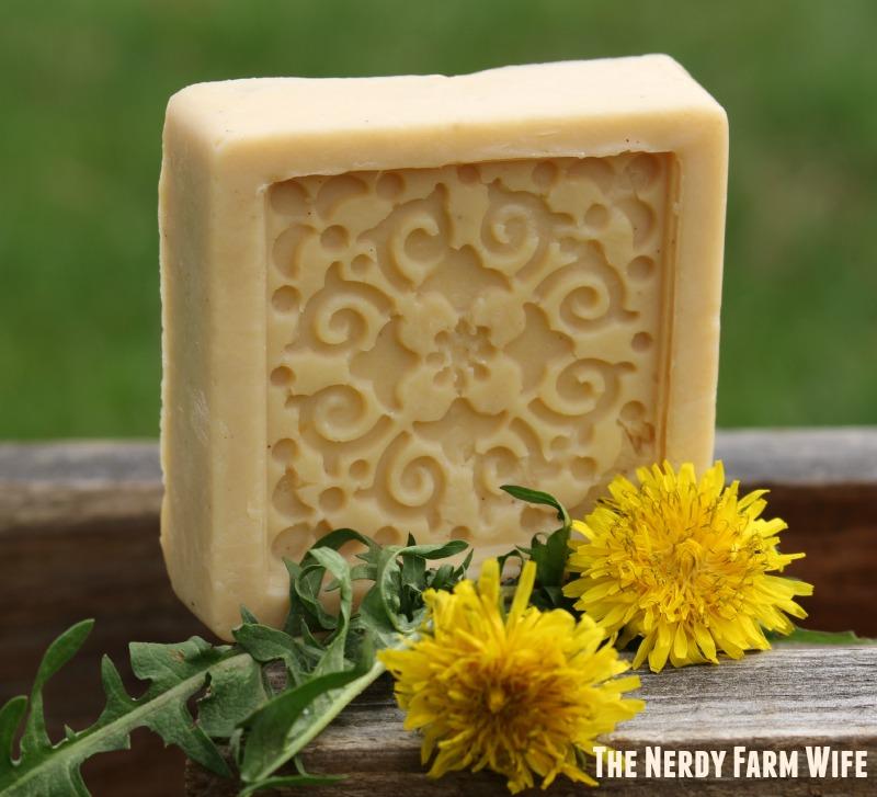 Handmade Dandelion Soap Crock Pot Method The Nerdy