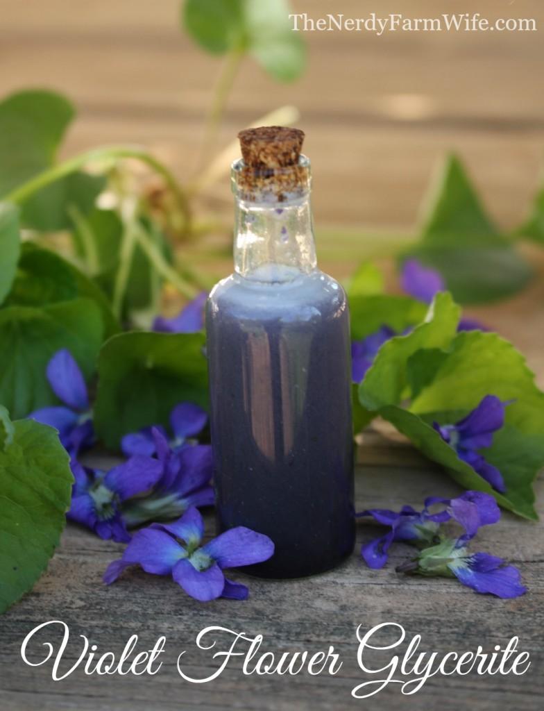 Violet Flower Glycerite