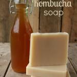 How to Make Kombucha Soap Palm Free Recipe
