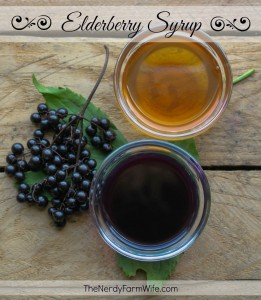 How to Make Homemade Elderberry Syrup for Cold & Flu Season