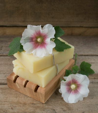 Hollyhock-Shampoo-Bar