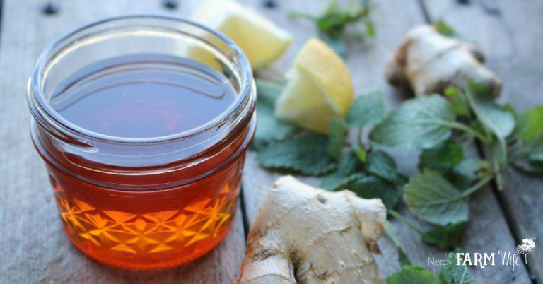 Ginger & Lemon Balm Honey Syrup for Colds & Flu