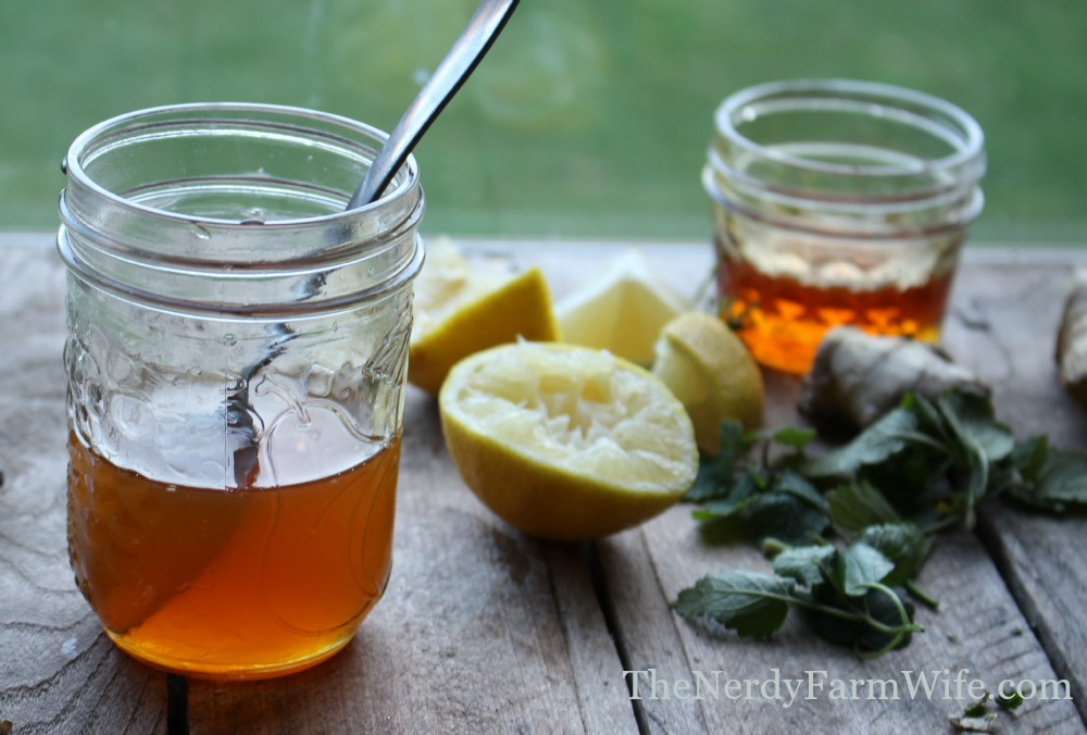 Ginger & Lemon Balm Cold and Flu Syrup