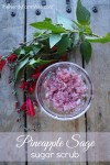 Pineapple Sage Sugar Scrub Recipe 700