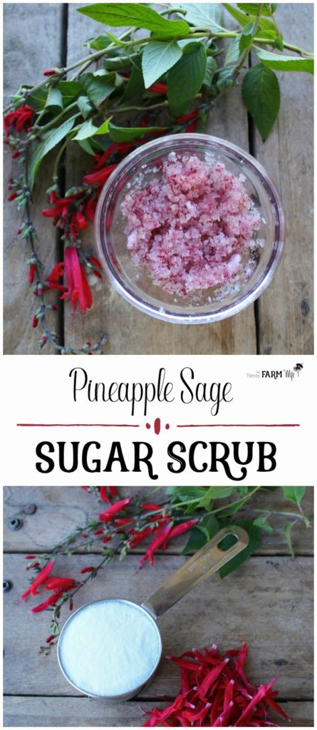 DIY Pineapple Sage Sugar Scrub - for naturally beautiful and smooth skin