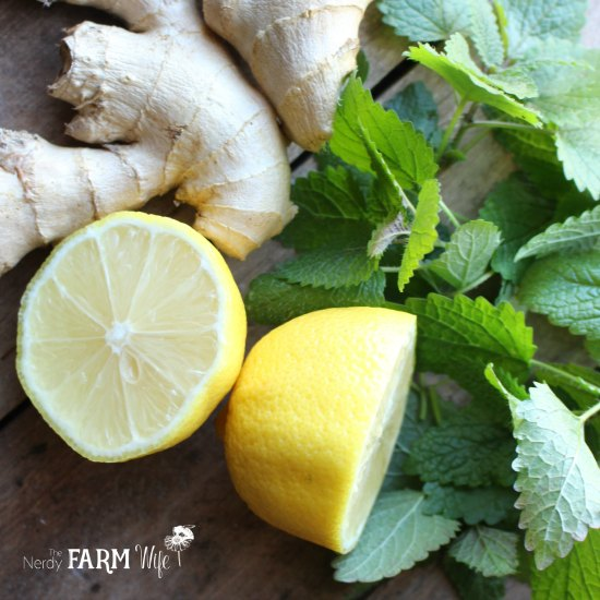 fresh lemons, ginger root, and lemon balm leaves