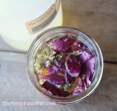 chamomile and roses infusing in sunflower oil