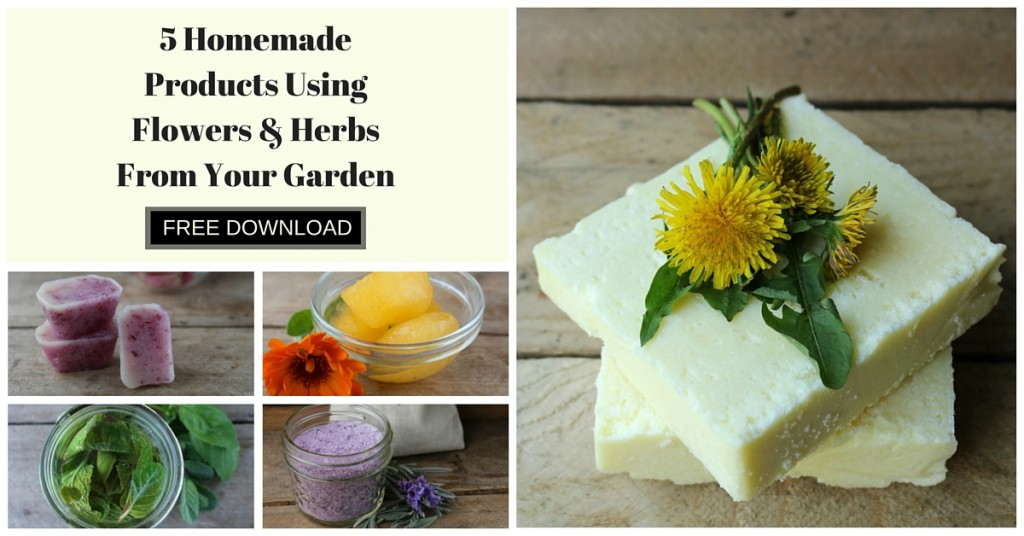 5 Homemade Products Using Flowers & Herbs From Your Garden