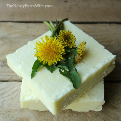 Dandelion Salt Bars Recipe