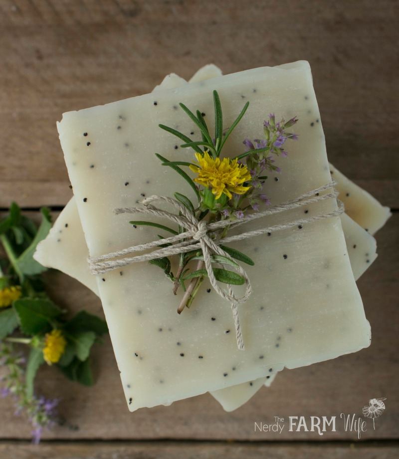 Dandelion scrub bar soap recipe for Dandelion flowers and gifts
