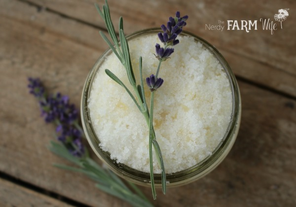 10 Things to Make With Lavender - Lavender Honey Scrub