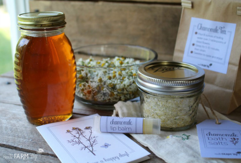 Chamomile Care Packages (with printables)