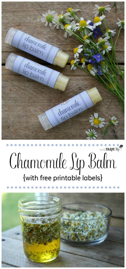 Soothing Chamomile Lip Balm with Printable Labels