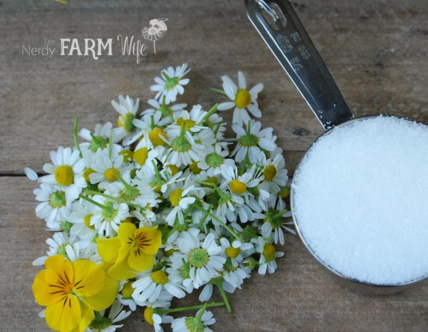 ingredients for chamomile bath salts