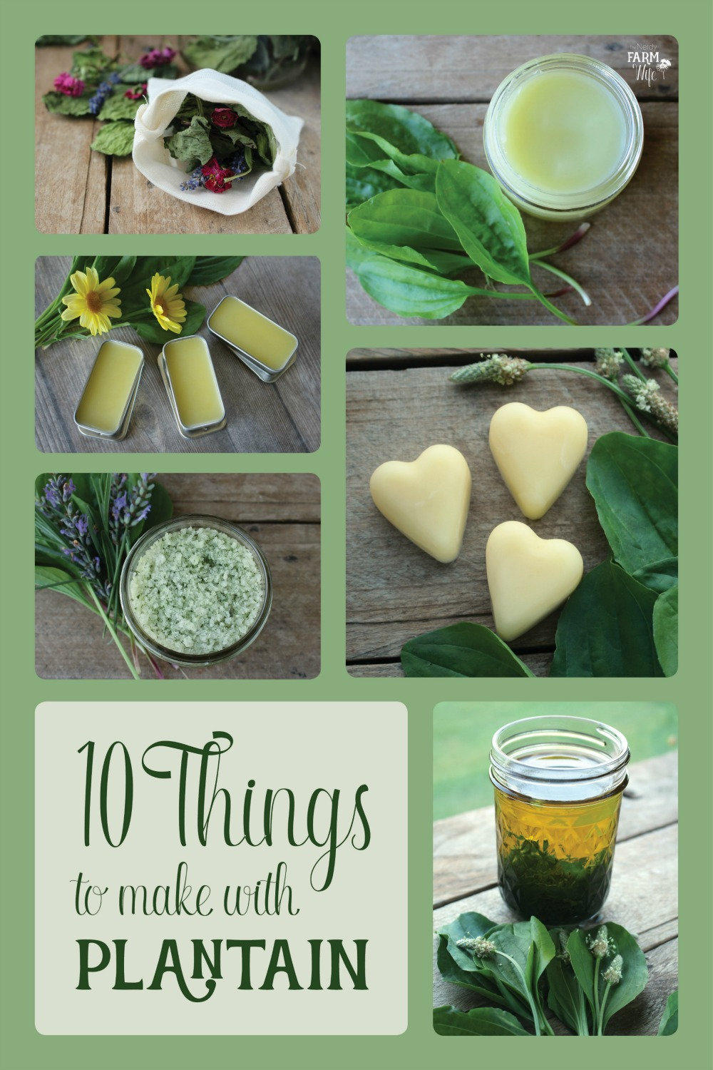 "collage of various plantain projects with text ""10 Things to Make with Plantain"""