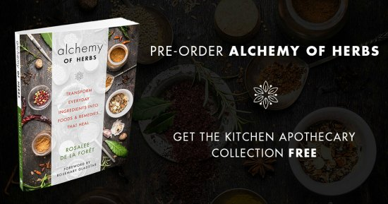 Preorder Alchemy of Herbs