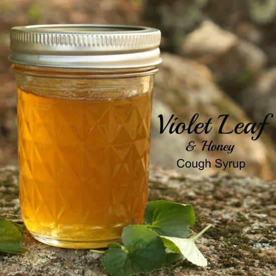 Violet Leaf Honey Cough Syrup Recipe