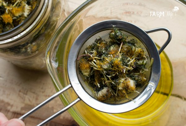 Straining Dandelion Infused Oil