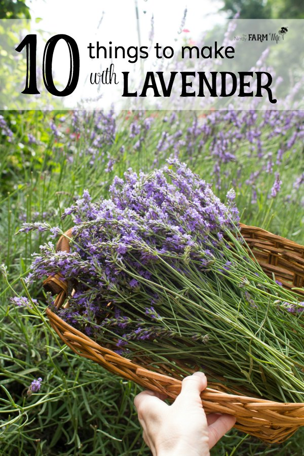 10 Things to Make With Lavender - Have a bountiful crop of lavender from your garden, local farmer's market or a trip to a lavender farm, but not sure what to do with it?  Here are 10 useful and pretty things that you can make with that beautiful lavender so you can continue to enjoy it for months to come!