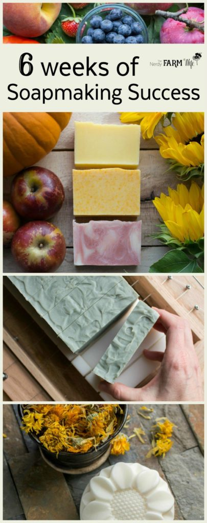 6 Weeks Soapmaking Success Course
