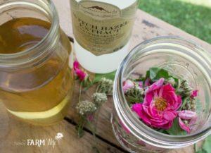 Rose Yarrow Plantain Itch Remedy