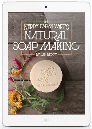 Cover of natural soapmaking ebook
