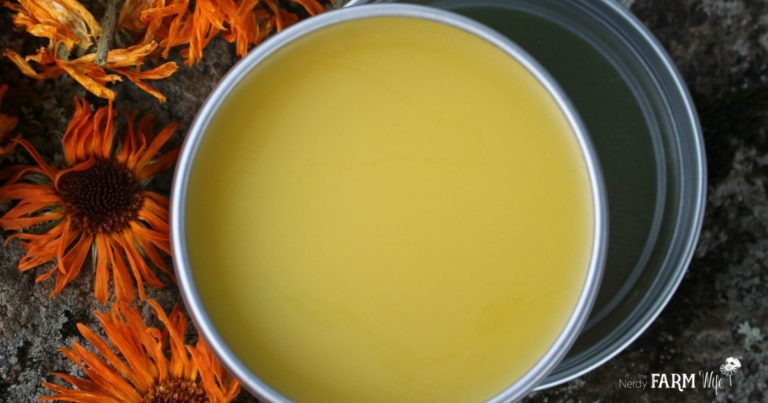 10+ Things to Make With Calendula Flowers