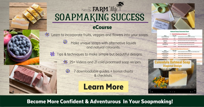 Soapmaking Success Course